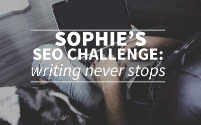 Sophie's SEO challenge: writing, writing and more writing