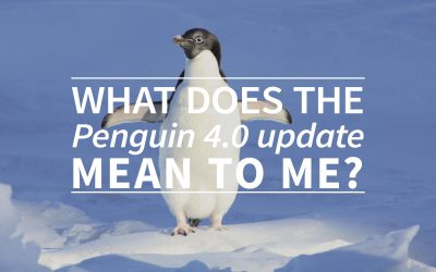 What does the penguin 4.0 update mean to me?